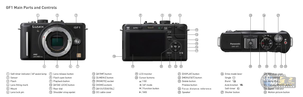 http://photorumors.com/wp-content/uploads/2009/08/panasonic-gf1-rumor.jpg