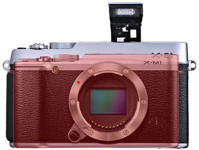 Fujifilm X-M1 camera size comparison 2