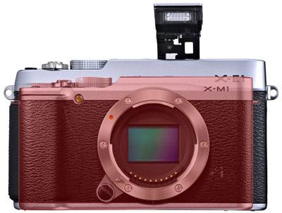Fujifilm X-M1 camera size comparison 2