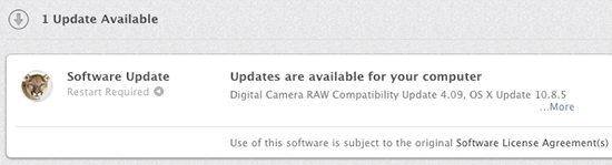 Apple-Digital-Camera-RAW-Compatibility-update-4.09