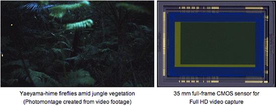 Canon-35-mm-full-frame-CMOS-sensor-for-video-capture