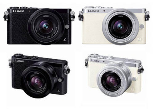 Panasonic GM1 camera