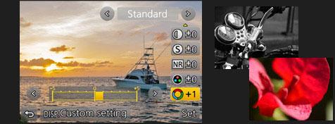 Panasonic-Lumix-GH4-camera-photo-style