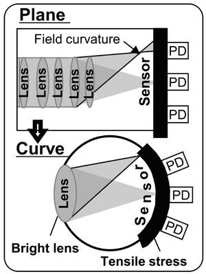 Sony curved sensor