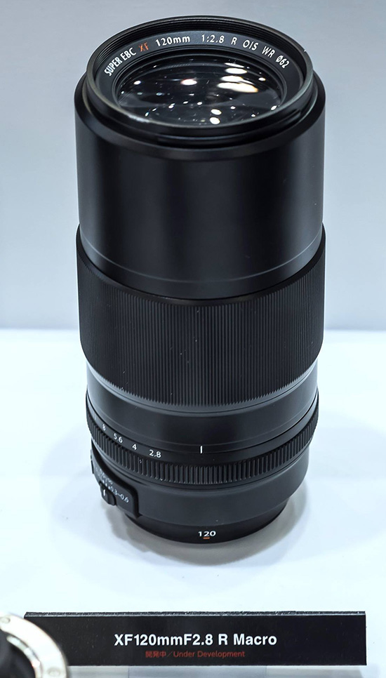 Fuji XF 120mm f/2.8 R Macro lens