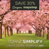 Topaz-Simplify-plugin-discount-code
