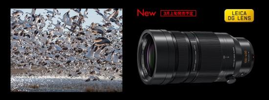 Leica DG Vario-Elmar 100-400mm f:4.0-6.3 ASPH POWER OIS lens