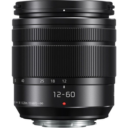 Panasonic Lumix G 12-60mm f:3.5-5.6 ASPH. POWER O.I.S. lens 2