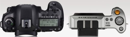 Hasselblad X1D vs Canon 5DS R 3
