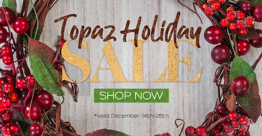 Topaz Labs 2018 holiday sale now live