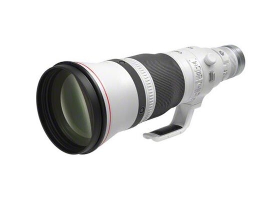 Canon RF 600mm f/4 L IS USM